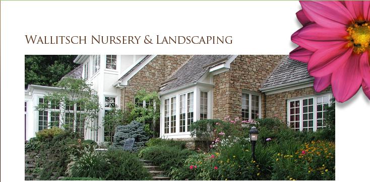 Welcome To Wallitsch Nursery Landscaping Landscape Design Louisville Kentucky