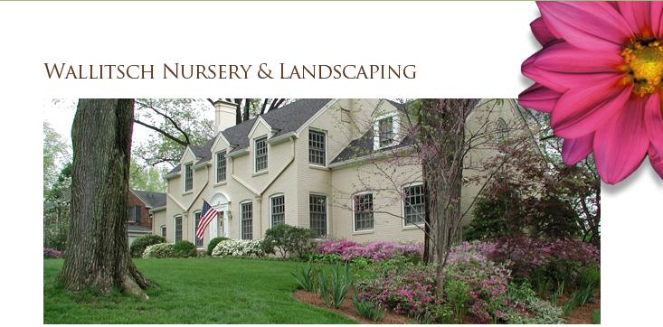 Wallitsch Nursery Landscaping Landscape Design Louisville Kentucky Landscape Care And Instructions